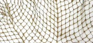 i am a net