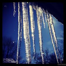 Clinging Icicles